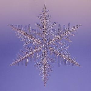snowflake-saiph--2010-paul-burwell