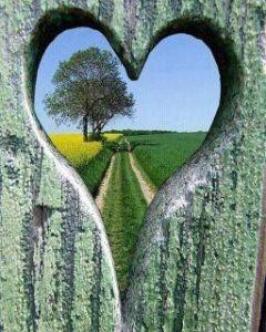 heart-path-2