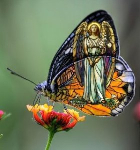 butterfly-stained-glass