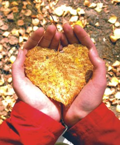 autumn-leaves-heart-shape-300