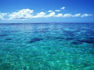 Tahiti_crystal_clear_sea_water_wallpaper_1200x900